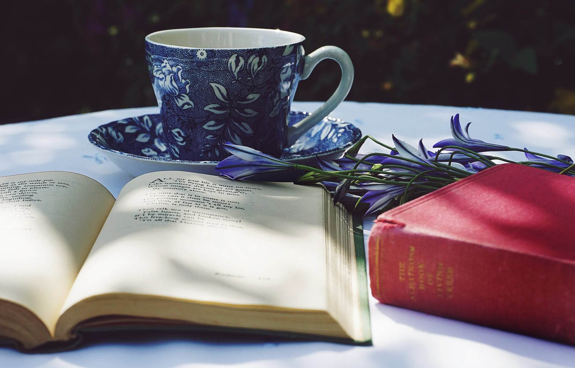 Tea & Reading | The Mustcard