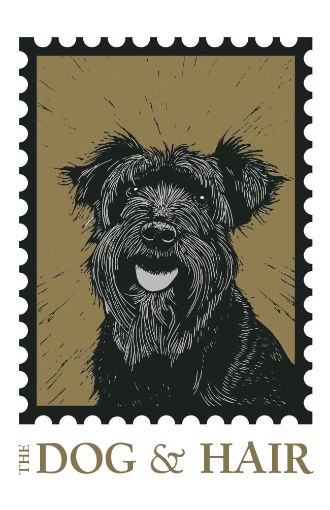 The Dog & Hair Logo   The Mustcard
