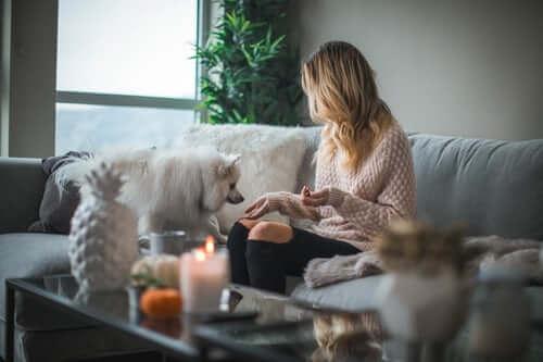 Feeding Dog on Sofa | The Mustcard