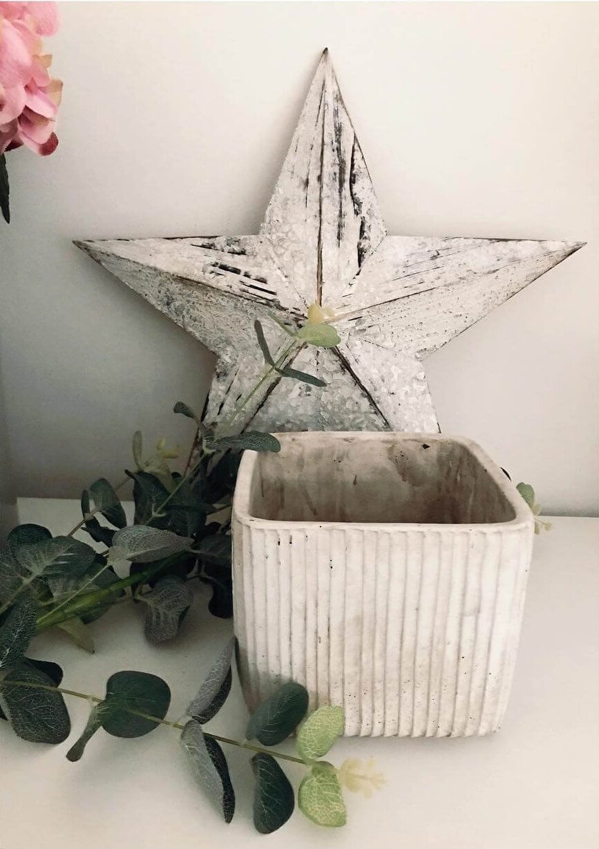 Star & Flower Pot | The Mustcard
